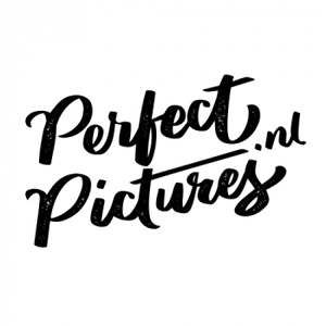 PerfectPictures.nl logo