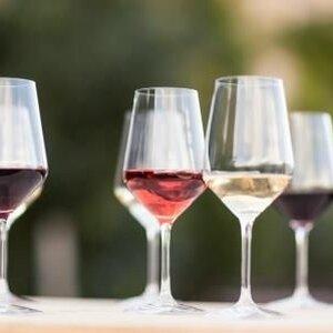 Wijn aan Zee image 3