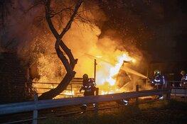 Paarden door brandweer uit vlammenzee gered in Halfweg