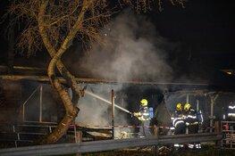 Twee paarden overleden bij stalbrand in Halfweg