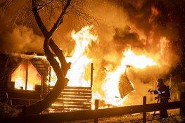 Spaarndammer (53) opgepakt voor brandstichting paardenstallen Halfweg