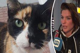 """Baasje vermiste kat zoekt in ondergrondse ruimtes op Schiphol: """"Het is een doolhof"""""""