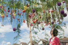 """Aalsmeer Flower Festival gaat niet door: """"We willen het risico niet lopen"""""""