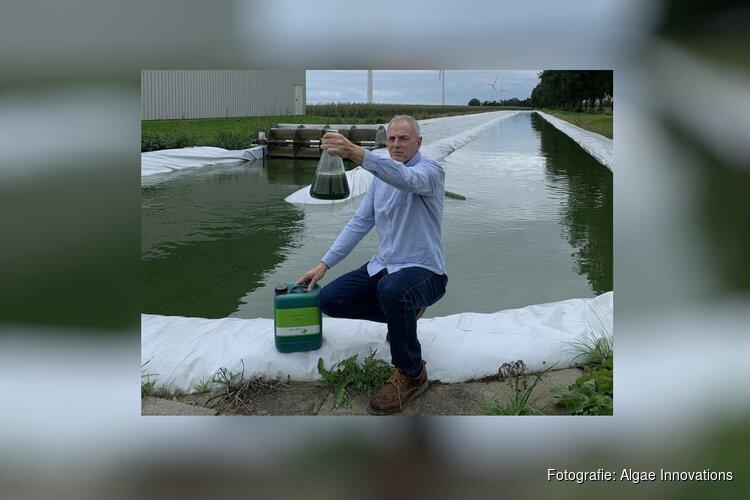 SHARE-winnaar Algae Innovations gaat door ondanks coronacrisis