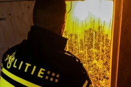 Hennepkwekerij aangetroffen in Hoofddorp
